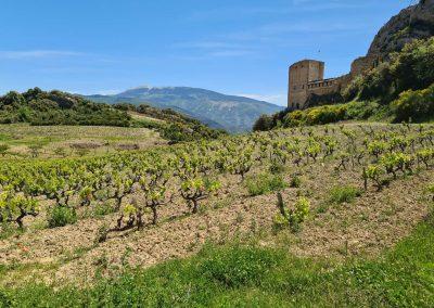 Merindol-les-oliviers, het oude dorp