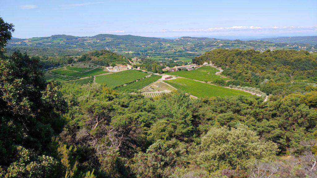 Uitzicht op wijnvelden tijdens wandeling Hameau de Géants